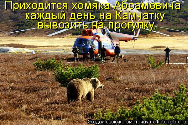 Котоматрица: Приходится хомяка Абрамовича  каждый день на Камчатку  вывозить на прогулку.