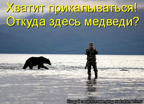 Котоматрица: Хватит прикалываться!  Откуда здесь медведи?