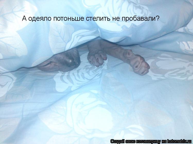 Котоматрица: А одеяло потоньше стелить не пробавали?