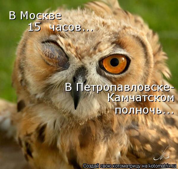 Котоматрица: В Москве  15  часов... В Петропавловске- Камчатском полночь...