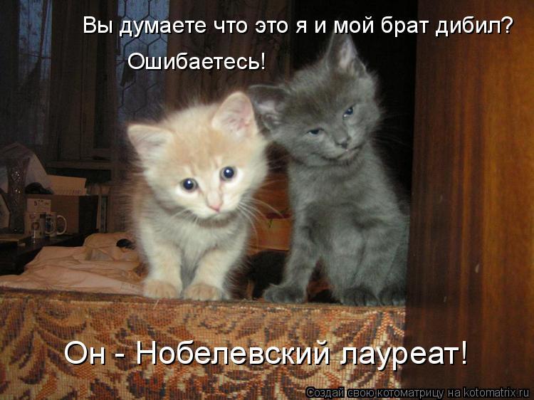 Котоматрица: Вы думаете что это я и мой брат дибил? Ошибаетесь! Он - Нобелевский лауреат!