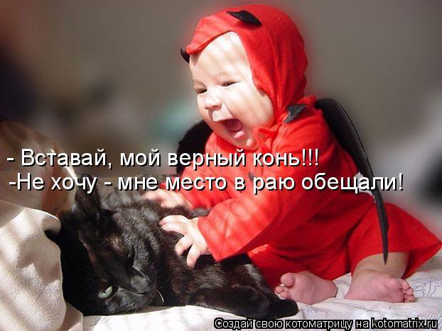 Котоматрица: - Вставай, мой верный конь!!! -Не хочу - мне место в раю обещали!