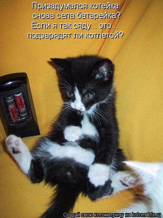 Котоматрица: Призадумался котейка: снова села батарейка? подзарядят ли котлетой? Если я так сяду... это...