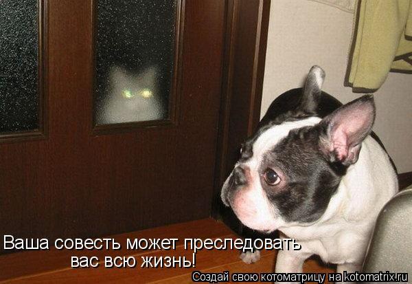 http://kotomatrix.ru/images/lolz/2010/04/28/558902.jpg