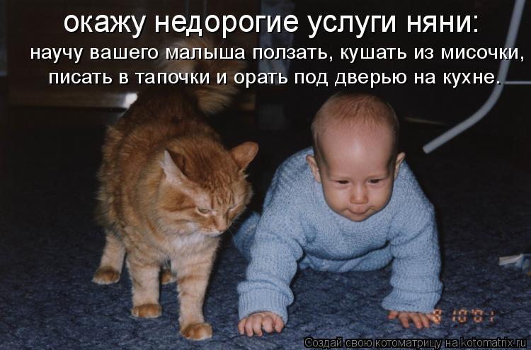 Котоматрица: окажу недорогие услуги няни: научу вашего малыша ползать, кушать из мисочки, писать в тапочки и орать под дверью на кухне.