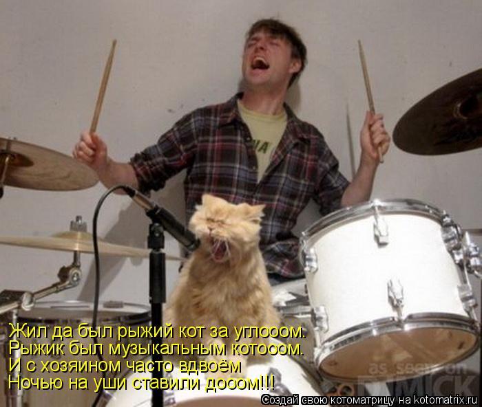 Котоматрица: Жил да был рыжий кот за углооом. Рыжик был музыкальным котооом. И с хозяином часто вдвоём Ночью на уши ставили дооом!!!