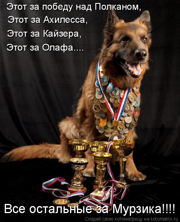 Котоматрица: Этот за Ахилесса, Этот за победу над Полканом, Этот за Кайзера, Этот за Олафа.... Все остальные за Мурзика!!!!