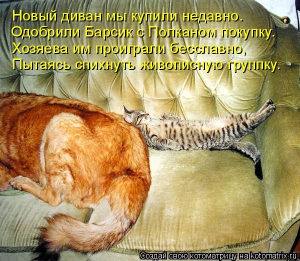 Котоматрица: Новый диван мы купили недавно. Одобрили Барсик с Полканом покупку. Хозяева им проиграли бесславно, Пытаясь спихнуть живописную группку.