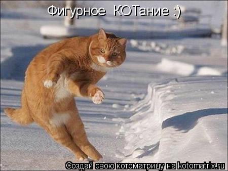 Котоматрица: Фигурное  КОТание :)