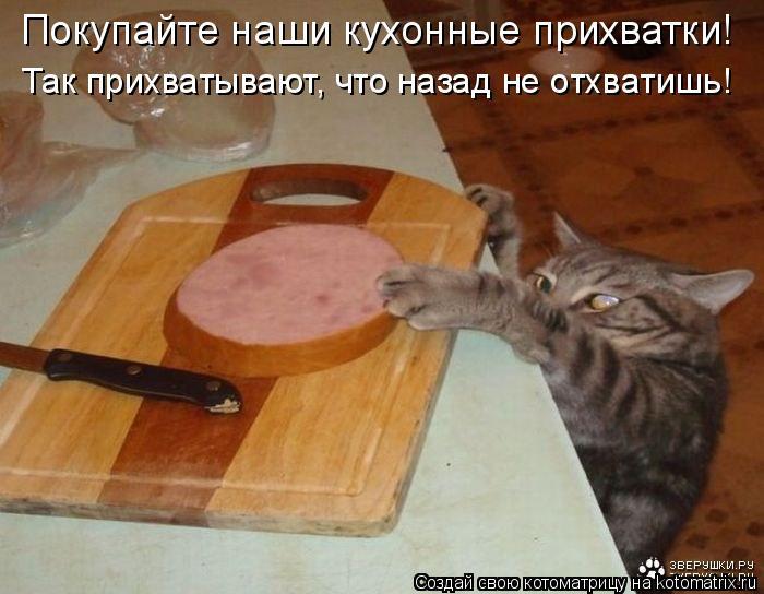 Котоматрица: Покупайте наши кухонные прихватки! Так прихватывают, что назад не отхватишь!