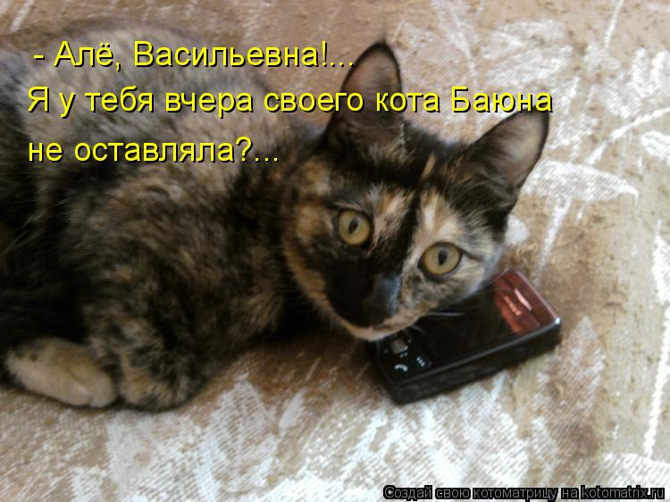Котоматрица: - Алё, Васильевна!... Я у тебя вчера своего кота Баюна  не оставляла?...