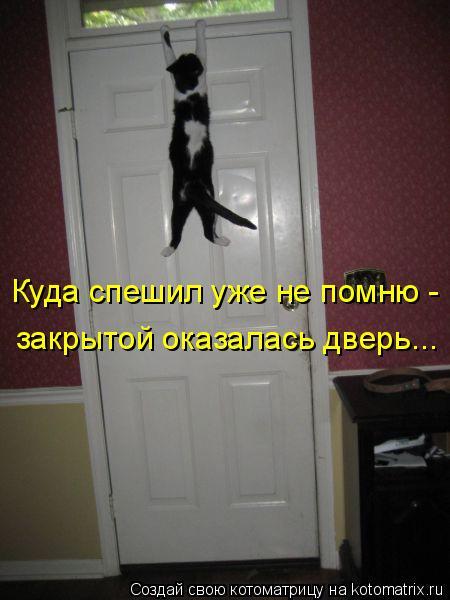 Котоматрица: Куда спешил уже не помню -  закрытой оказалась дверь...