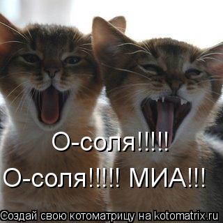 Котоматрица: О-соля!!!!! О-соля!!!!! МИА!!!