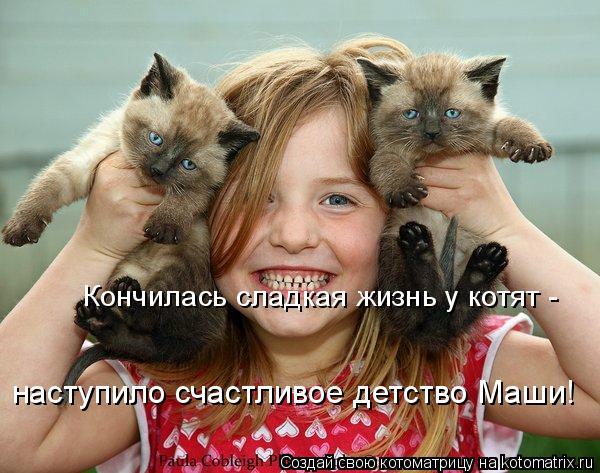 Котоматрица: Кончилась сладкая жизнь у котят -  наступило счастливое детство Маши!