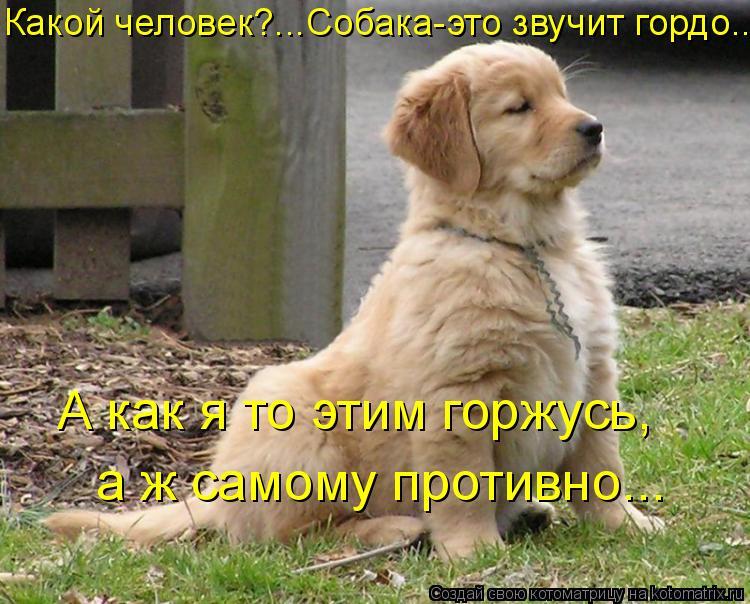 Котоматрица: Какой человек?...Собака-это звучит гордо….. а ж самому противно... А как я то этим горжусь,