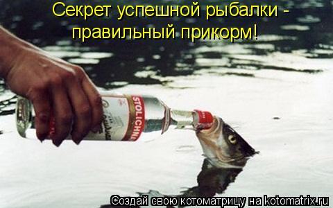Котоматрица: Секрет успешной рыбалки -  правильный прикорм!