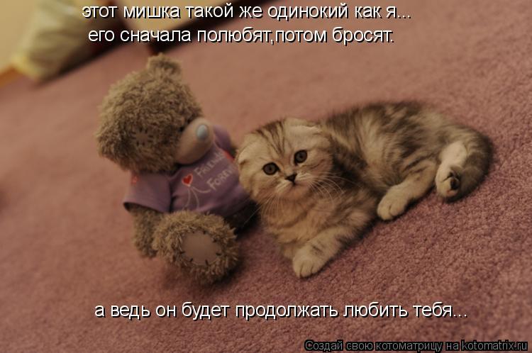 Котоматрица: этот мишка такой же одинокий как я... его сначала полюбят,потом бросят. а ведь он будет продолжать любить тебя...