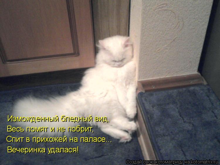 Котоматрица: Изможденный бледный вид, Весь помят и не побрит, Спит в прихожей на паласе... Вечеринка удалася!