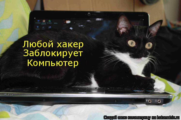 Котоматрица: Любой хакер Заблокирует Компьютер