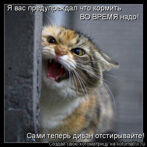 Котоматрица: Я вас предупреждал что кормить ВО ВРЕМЯ надо! Сами теперь диван отстирывайте!