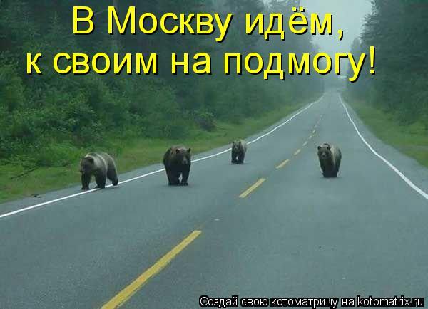 Котоматрица: В Москву идём,  к своим на подмогу!