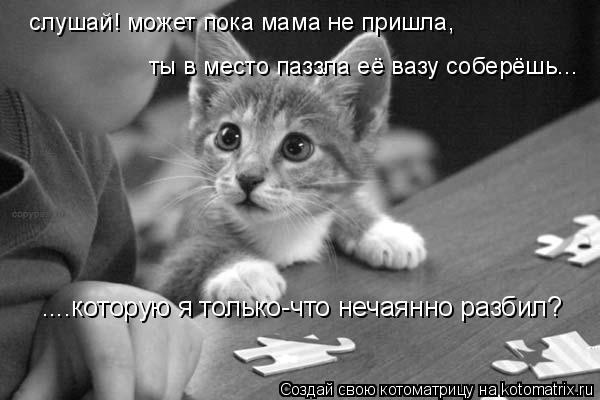 Котоматрица: ....которую я только-что нечаянно разбил? слушай! может пока мама не пришла,  ты в место паззла её вазу соберёшь...