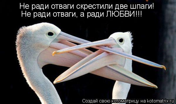 http://kotomatrix.ru/images/lolz/2010/05/05/564658.jpg
