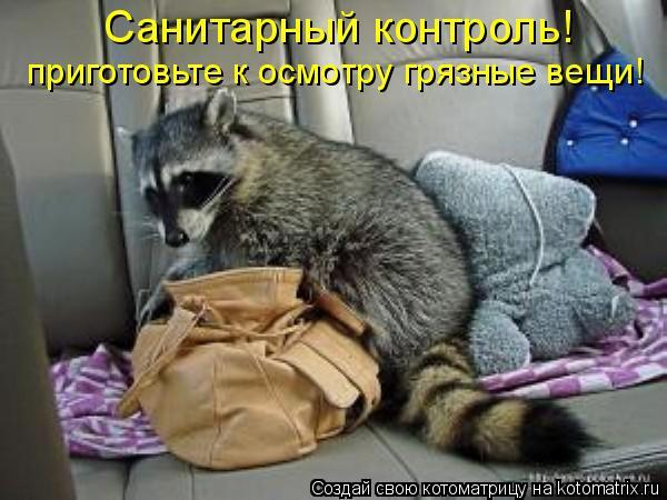 Котоматрица: Санитарный контроль! приготовьте к осмотру грязные вещи!