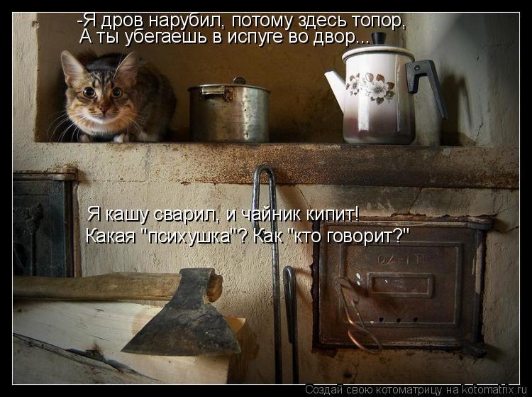 """Котоматрица: -Я дров нарубил, потому здесь топор, А ты убегаешь в испуге во двор... Я кашу сварил, и чайник кипит! Какая """"психушка""""? Как """"кто говорит?"""""""