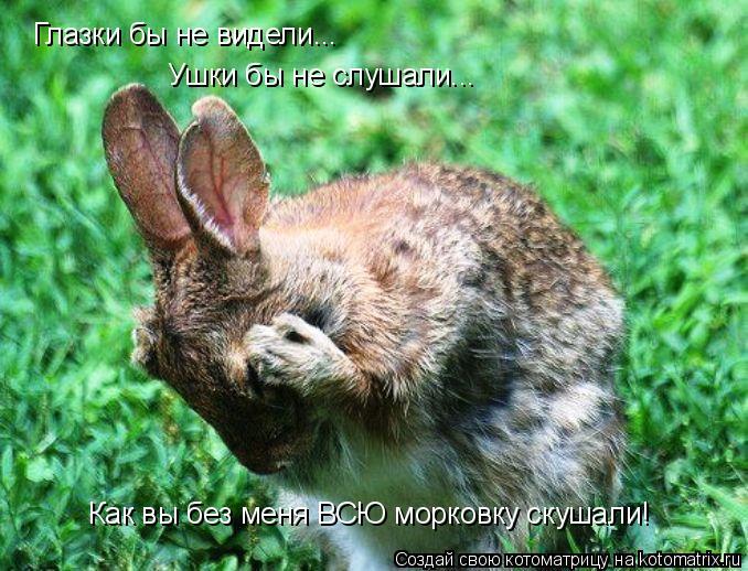 Котоматрица: Глазки бы не видели... Ушки бы не слушали... Как вы без меня ВСЮ морковку скушали!