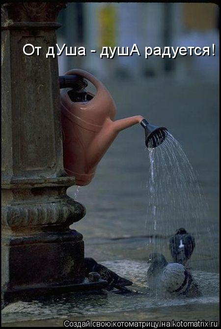 Котоматрица: От дУша - душА радуется!