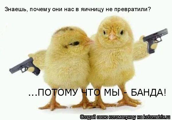 http://kotomatrix.ru/images/lolz/2010/05/06/566062.jpg