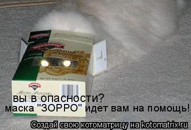 """Котоматрица: вы в опасности? маска """"ЗОРРО"""" идет вам на помощь!"""