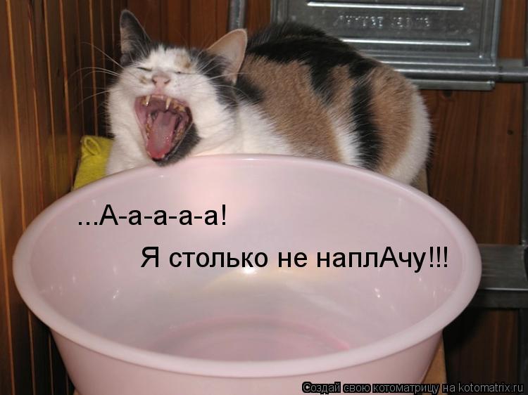 ...А-а-а-а-а!  Я столько не наплАчу!!!