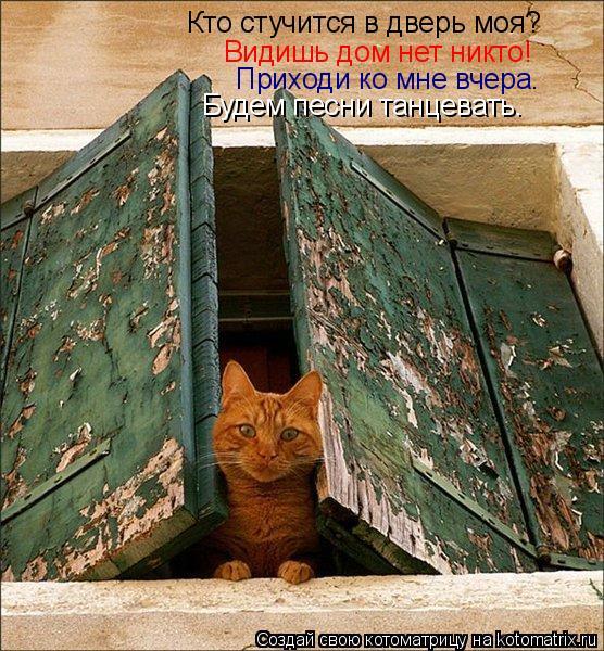 Котоматрица: Кто стучится в дверь моя? Видишь дом нет никто! Приходи ко мне вчера. Будем песни танцевать.