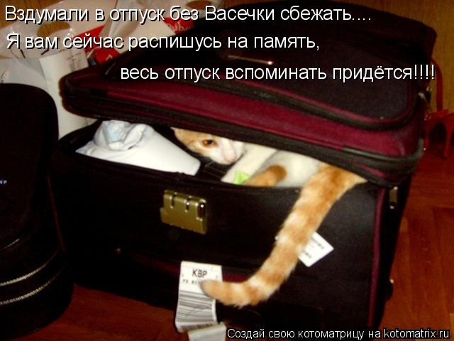 Котоматрица: Вздумали в отпуск без Васечки сбежать.... Я вам сейчас распишусь на память,  весь отпуск вспоминать придётся!!!!
