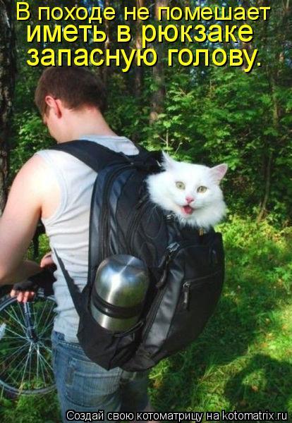 Котоматрица: В походе не помешает  иметь в рюкзаке  запасную голову.