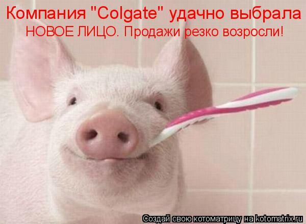 """Котоматрица: Компания """"Colgate"""" удачно выбрала  НОВОЕ ЛИЦО. Продажи резко возросли!"""