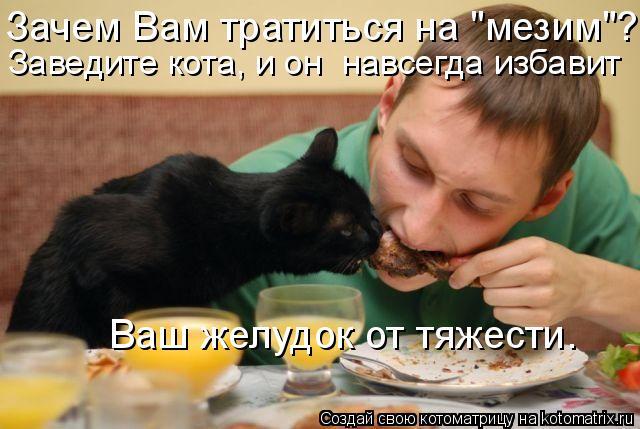 """Котоматрица: Заведите кота, и он  навсегда избавит  Ваш желудок от тяжести. Зачем Вам тратиться на """"мезим""""?"""