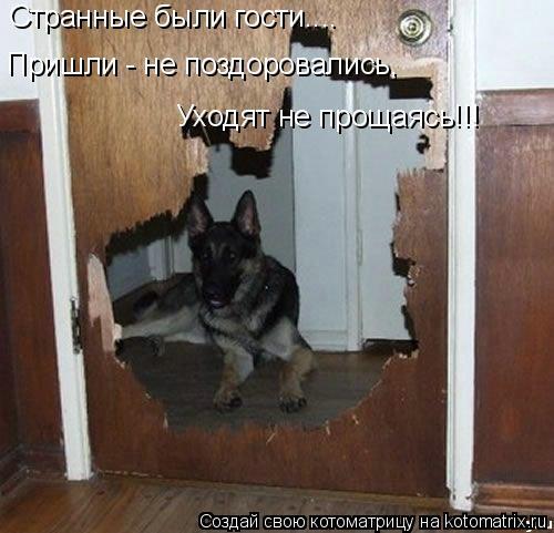 Котоматрица: Странные были гости.... Пришли - не поздоровались,  Уходят не прощаясь!!!