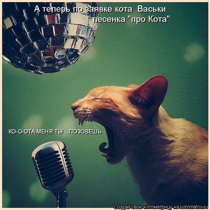 """Котоматрица: А теперь по заявке кота  Васьки  песенка """"про Кота"""" КО-О-ОТА МЕНЯ ТЫ ...ПОЗОВЕШЬ"""