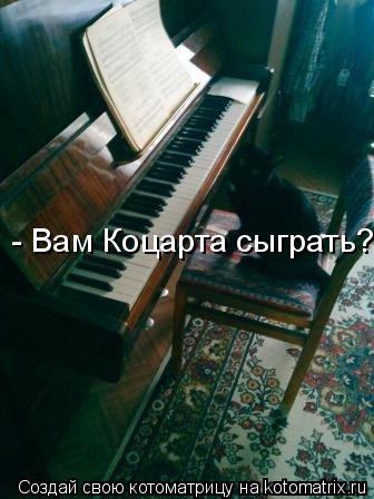 Котоматрица: - Вам Коцарта сыграть?