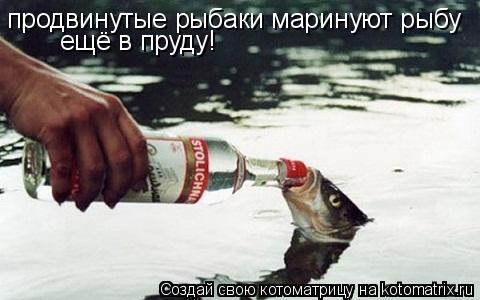Котоматрица: продвинутые рыбаки маринуют рыбу ещё в пруду!