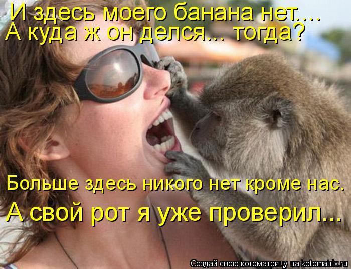 Котоматрица: И здесь моего банана нет.... А свой рот я уже проверил... А куда ж он делся... тогда?  Больше здесь никого нет кроме нас.