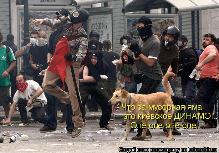 Котоматрица: - Что за мусорная яма это киевское ДИНАМО!... Оле-оле-оле-оле!...