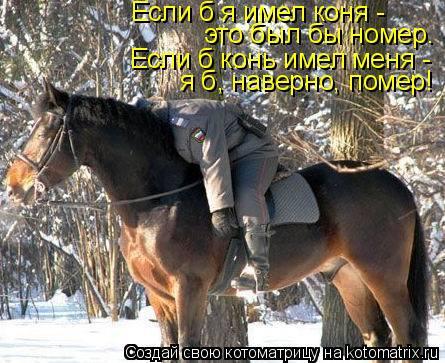 Котоматрица: Если б я имел коня -  это был бы номер. Если б конь имел меня - я б, наверно, помер!