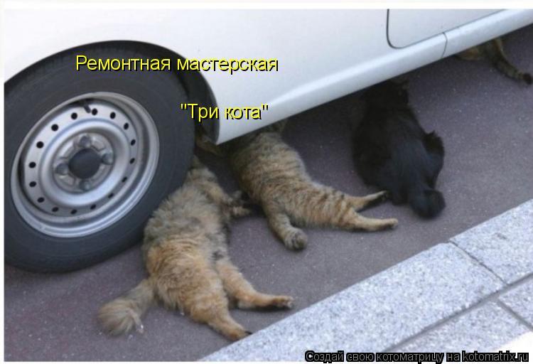 """Котоматрица: Ремонтная мастерская """"Три кота"""""""