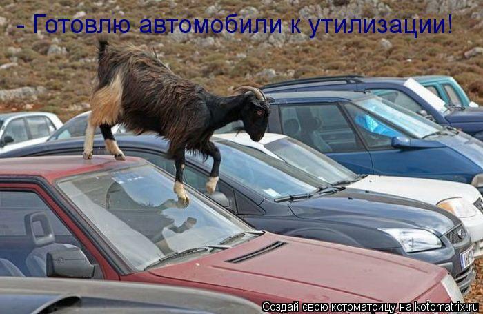 Котоматрица: - Готовлю автомобили к утилизации!
