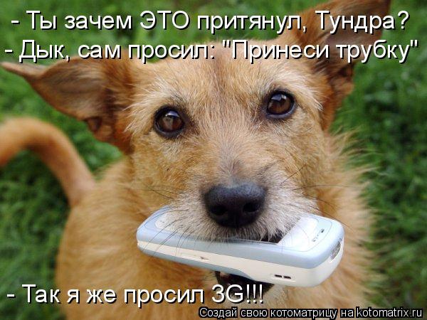 """Котоматрица: - Ты зачем ЭТО притянул, Тундра? - Дык, сам просил: """"Принеси трубку"""" - Так я же просил 3G!!!"""