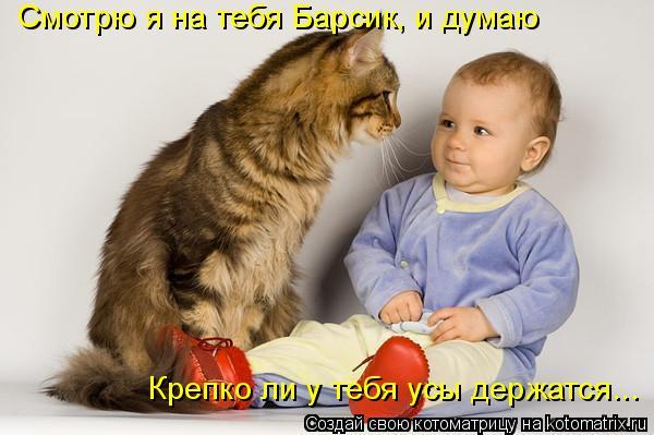 Котоматрица: Смотрю я на тебя Барсик, и думаю Крепко ли у тебя усы держатся...